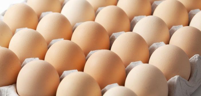 تعرف كيف تحافظ على البيض طازج وصحي لأطول مدة Fresh eggs
