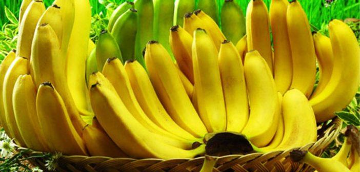 هكذا تتغير فوائد الموز بتغير لونه